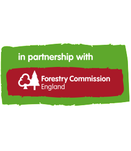 Wild Heritage works in partnership with the Forestry Commisson