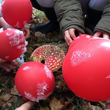 Troop of fly agarics