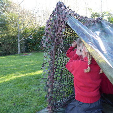 Our future naturalists – bird watching with children
