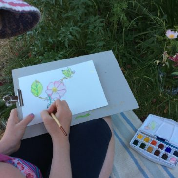 Drawing from nature – an invitation